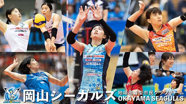 banner_photoreco.jpg
